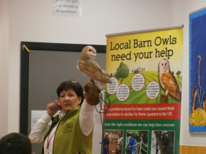 BOPH - Barn Owl Project Hampshire We were vitited by Wisdom, a beautiful Barn Owl to learn about how they live and survive in the wild and adapt to their surroundings